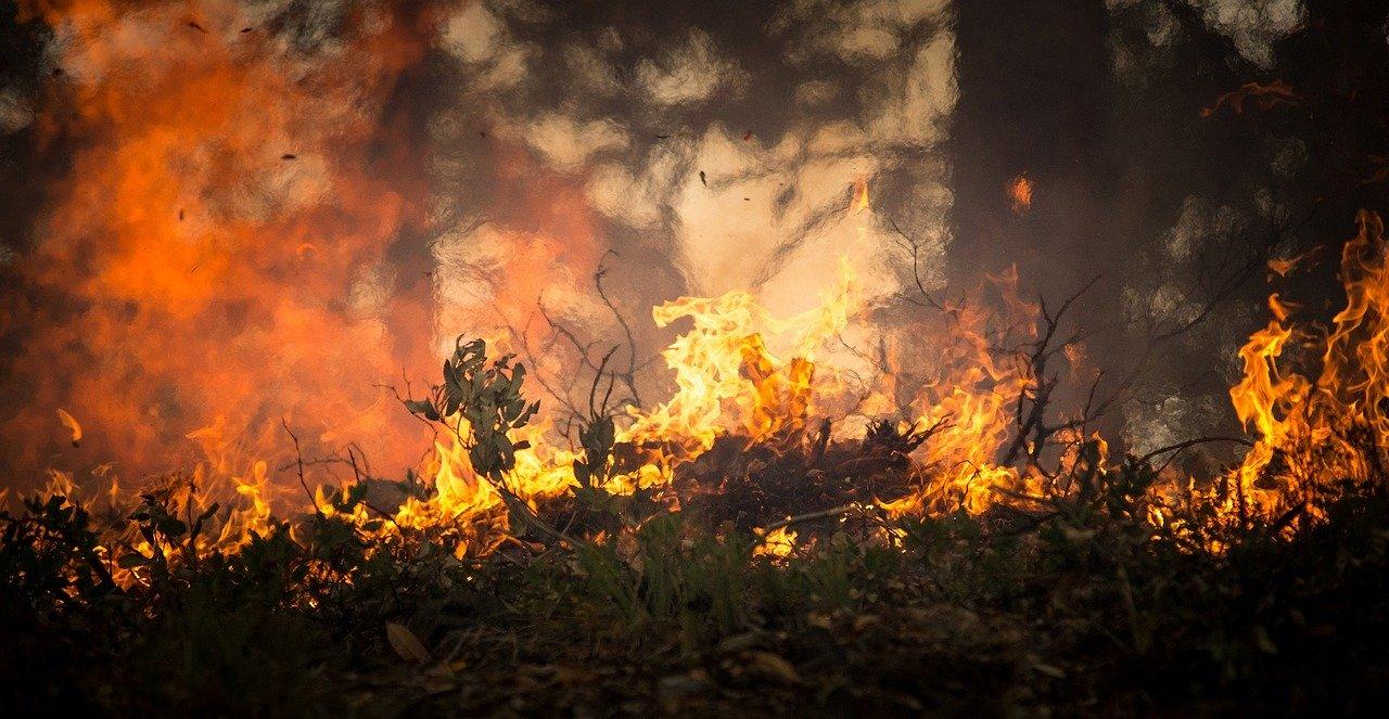 Sermon Notes: THROUGH THE FIRE